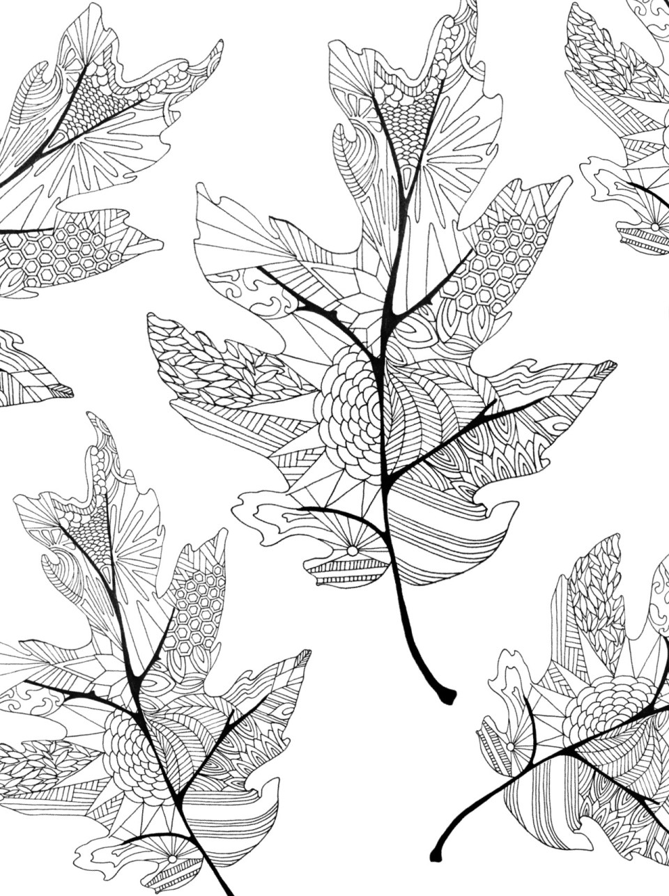 leaf coloring pages for adults - photo#5