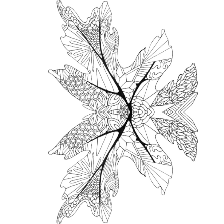 leaf coloring pages for adults - photo#36