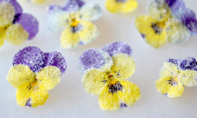 Edible therapy flowers